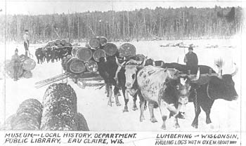 Bitter cold lumber camps