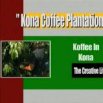 Kona Coffee Plantation