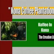 A Little Coffee from Kona
