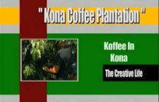 A Little Coffee from Kona